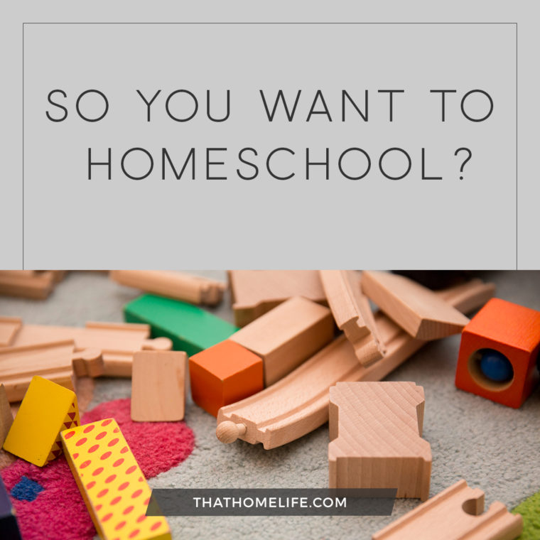 So You Want To Homeschool